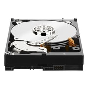 "Western Digital  WD3000F9YZ 3TB SATA 3.5"" SATA Internal Hard Drive"