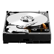 Western Digital Red Pro WD3001FFSX 3TB SATA NAS Internal Hard Drive