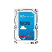 Seagate® Enterprise NAS 2TB Internal Hard Drive (ST2000VN0011)