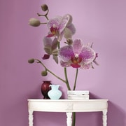 Brewster Home Fashions Euro Freestyle Orchids Wall Decal