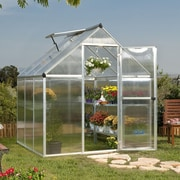 Palram Nature Twin Wall 6 Ft. W x 6 Ft. D Plastic Polycarbonate Greenhouse; Silver