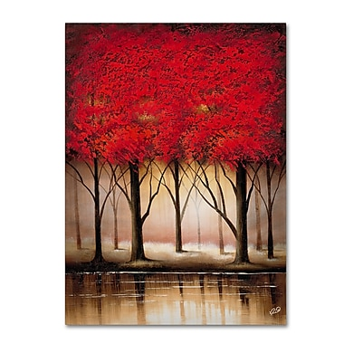 Trademark Fine Art Rio 'Serenade in Red' Canvas Art 35x47 Inches