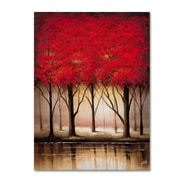Trademark Fine Art Rio 'Serenade in Red' Canvas Art 24x32 Inches