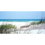 "Biggies- Wall Mural- S Carolina Coast 54"" x 27"""