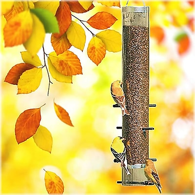 Perky Pet Distelfink Nyjer/Thistle Bird Feeder (WYF078276316919) photo