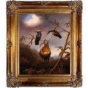 Tori Home Black-Breasted Plovercrest Heade Framed Original Painting; Bronze
