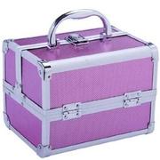 Aosom Mini Cosmetics Train Case; Pink