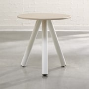 Sauder Ellie Soft Modern End Table; Pickeled Ash / Arctic White