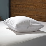 Sealy Stain Protection Zippered Pillow Encasement (Set of 2); King
