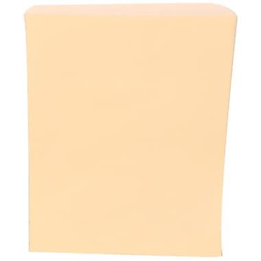 JAM Paper® – Sacs pour marchandise, format moyen, 8 1/2 po x 11 po, ivoire, paq./1000