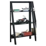 InRoom Designs 43'' Accent Shelves; Black