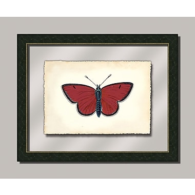 Melissa Van Hise Butterfly ll Framed Graphic Art