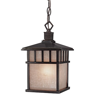 Dolan Designs Barton 1-Light Outdoor Hanging Lantern; Winchester