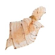 Saro Sheer Fuzzy Stripes Napkin (Set of 12); Gold