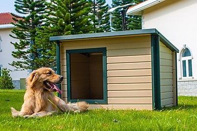 New Age Pet ecoChoice Rustic Lodge Style