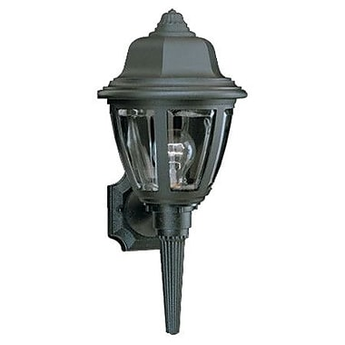 Thomas Lighting Plastic 1-Light Outdoor Sconce; Black
