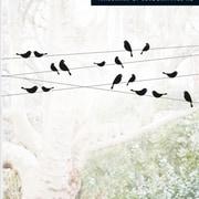 Platin Art Good Morning Birdies Window Sticker