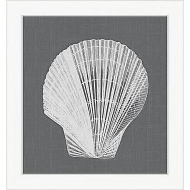 Melissa Van Hise Shell ll Framed Graphic Art