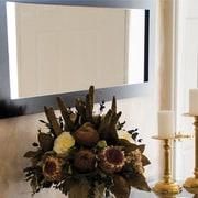 Plateau SL Series Home Mirror