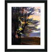 Studio Works Modern ''Evening Foliage'' by Zhee Singer Framed Graphic Art; Black