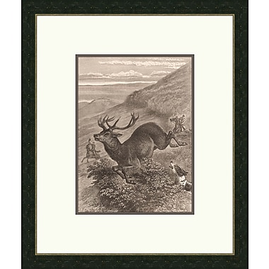 Melissa Van Hise Forest Dwellers ll Framed Graphic Art