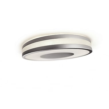 Philips Fusion 1 Light Flush Mount
