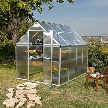 Palram Nature 6 Ft. W x 8 Ft. D Greenhouse; Silver