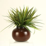 D & W Silks Grass in Round Ceramic Pot