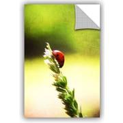 ArtWall 'Ladybug Descent' by Dragos Dumitrascu Photographic Print; 24'' H x 16'' W x 0.1'' D