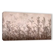 ArtWall Wildflowers Brown by Cora Niele Graphic Art on Wrapped Canvas; 18'' H x 36'' W x 2'' D