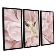 ArtWall 'Pastel' by Cora Niele 3 Piece Framed Photographic Print Set; 36'' H x 54'' W x 2'' D