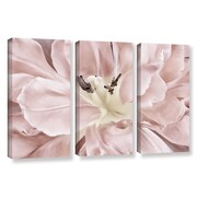 ArtWall 'Pastel' by Cora Niele 3 Piece Graphic Art on Wrapped Canvas Set; 36'' H x 54'' W x 2'' D