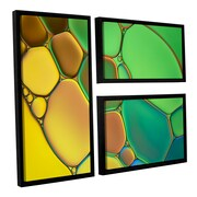 ArtWall 'Stained Glass III' by Cora Niele 3 Piece Floater Framed Photographic Print Set