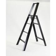 Lucano 4-Step Aluminum Step Stool w/ 200 lb. Load Capacity; Black