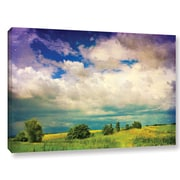 ArtWall 'Mighty Clouds' by Dragos Dumitrascu Photographic Print on Wrapped Canvas