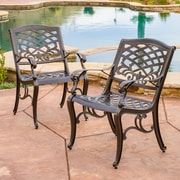 Home Loft Concepts Griffen Cast Aluminum Outdoor Chair (Set of 2)