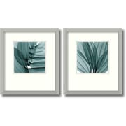 Amanti Art 'Silver Lilies' by Steven N. Meyers 2 Piece Framed Photographic Print Set