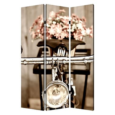 Screen Gems 72'' X 48'' Valentine 3 Panel Room Divider