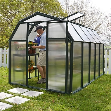 Rion EcoGrow 2 Twin Wall 6.5 Ft. W x 10.5 Ft. D Polycarbonate Greenhouse