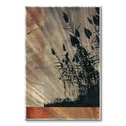 All My Walls 'Warm Grasses' by Tina Chaden Graphic Art Plaque