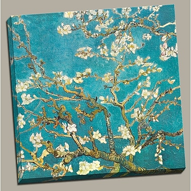 Portfolio Canvas ''Almond Blossom'' Painting Print on Wrapped Canvas