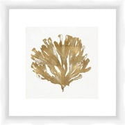 PTM Images Gold Coral Gicl e Framed Graphic Art