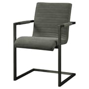 Moe's Home Collection Sabina Arm Chair; Grey
