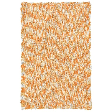 St. Croix Shagadelic Orange Twist Swirl Shag Area Rug; 3' x 4'