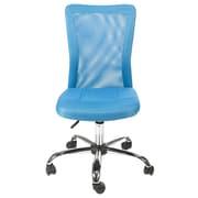 Merax Mesh Office Chair; Lt. Blue