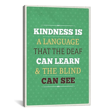 iCanvas American Flat Kindness Textual Art on Wrapped Canvas; 18'' H x 12'' W x 0.75'' D