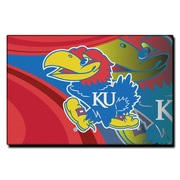 Northwest Co. Collegiate Kansas Cosmic Mat