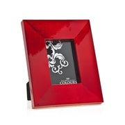 Philip Whitney Picture Frame; Red