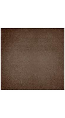 LUX 12 x 12 Cardstock 250/Box, Bronze Metallic (1212-C-M22-250) 1985431