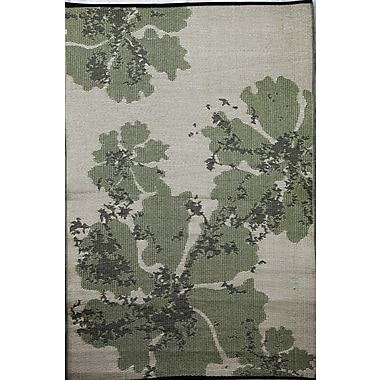 b.b.begonia Boca Reversible Design Green/Brown Outdoor Area Rug; 4' x 6'
